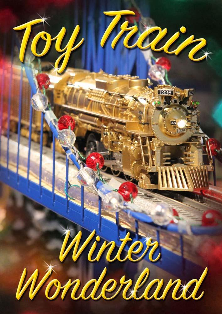 Toy Train Winter Wonderland DVD TM Books and Video WINTER