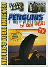 Lots & Lots of Penguins in the Wild DVD